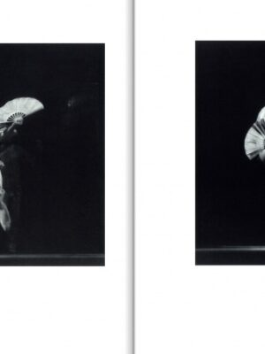 balet1-800x481