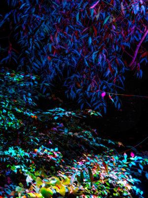 Garden(CaseStudy)_2015